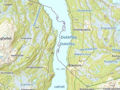 NORGES RARESTE?: Slik ser grensa i Dokkfløyvatnet mellom kommunene Gausdal og Nordre Land ut på kartet. Bildet er hentet fra Kartverkets digitale norgeskart.