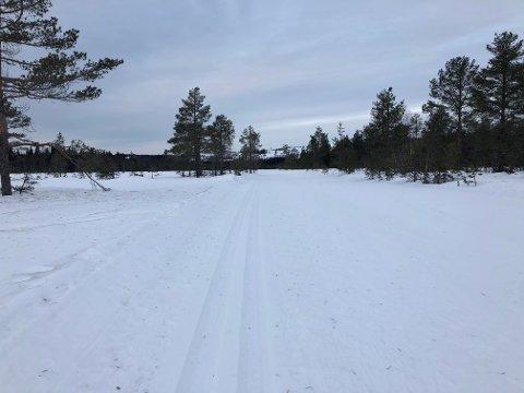Vår reporter Tommy Gullord rapporterer om fine forhold i Gjøvik-marka.