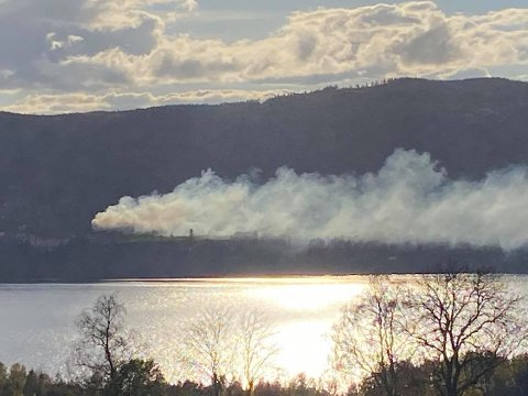 GODT SYNLIG: Røyken fra bråtebrannen er godt synlig langs Randsfjorden.