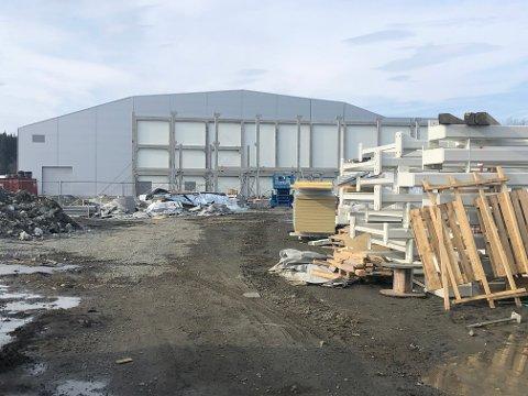 Slik ser det ut ved multisporthallen  på Vind om dagen. Det er full driftsstans, og byggeleder Anders Myhre i Vind IL antyder at planlagt ferdigstillelse 1. juni i beste fall blir forskjøvet til skolestart.