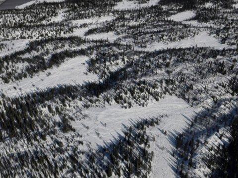 IKKE LOVLIG: Dette er ifølge Statens Naturoppsyn eksempel på ulovlig snøskuterkjøring i Etnedal.