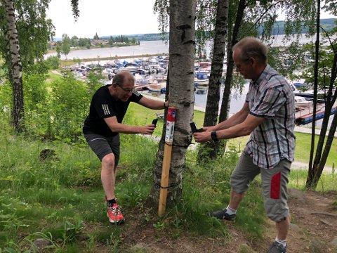 POPULÆRT: – Stolpejakten handler ikke bare om den fysiske helsen, men også om den mentale, forteller Tommy Gullord og Arnfinn Pedersen, initiativtakerne til farsotten.