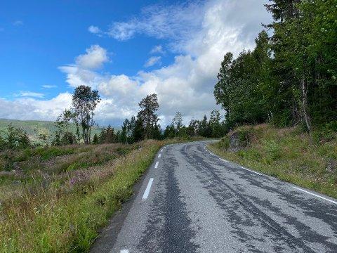 OMKOM: Dødsulykken natt til lørdag fant sted langs fylkesveg 2530 Øverbygdsvegen mellom Fåberg og Gausdal.