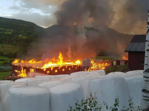 Dyretragedie: To fjøs brant ned i en voldsom brann på Tretten onsdag kveld.