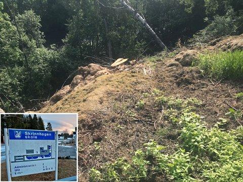 ULOVLIG FORSØPLING: Hageavfall og byggematerialer ligger i skråningen ned mot Vismunda ved Skrinnhagen skole.