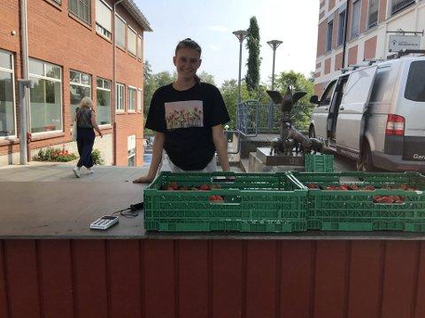 KJEMPESALG: Lea Korssjøen har solgt over 900 kurver med jordbær i dag. Tidligere på dagen var det 40 meter lang kø.