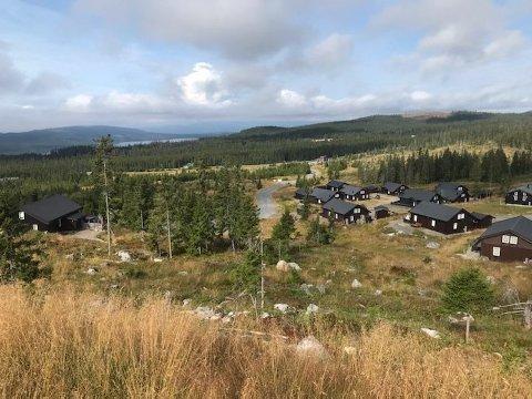 KASTET EGG: Det var i dette hyttefeltet i Natrudstilen på Sjusjøen hendelsen skjedde.