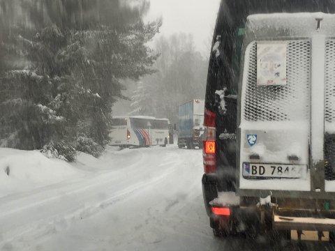 Buss sperrer Vevelstadveien. Foto: Anders Sølvberg