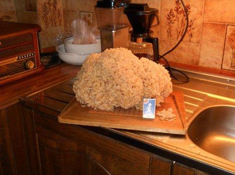 MATSOPP: Blomkålsoppen på 2,3 kilo blir både til saus, stuing og kremet soppsuppe i kjøkkenet på Vinterbro.