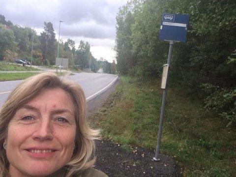 STENFELT: Langs Langhusveien, ved avkjøringen til Haugbro terrasse
