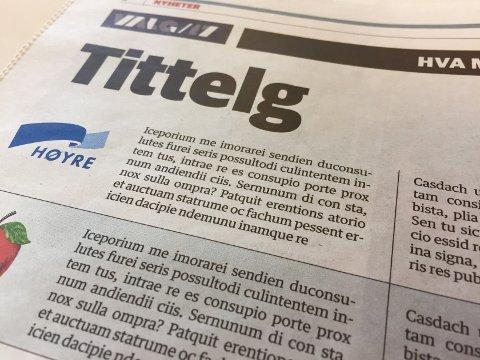 Det var ikke mye mening på side 8 i fredagens ØB. Vi trykker siden igjen i mandagens avis.