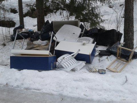 FORSØPLING: Ulovlig dumpet søppel i Haugenveien-Rolandsveien - dumpet mellom 2. og 3. april.