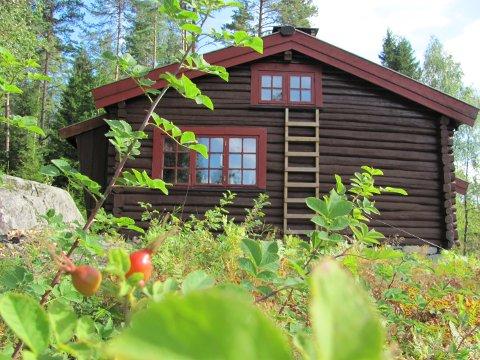 FINT TURMÅL: Sterkerud speiderhytte i skogen mellom Langhus og Siggerud.