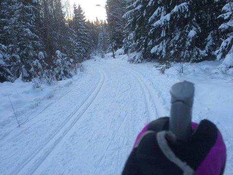 HUGGER: Nå i februar starter arbeidet med å hugge lysløypetrase fra Fløysbonn mot marka.