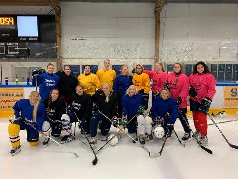 TRENGER SPONSOR: Ski Ladyhawks sliter med å komme seg på kamp med nok spillere til bortekamper langt unna.