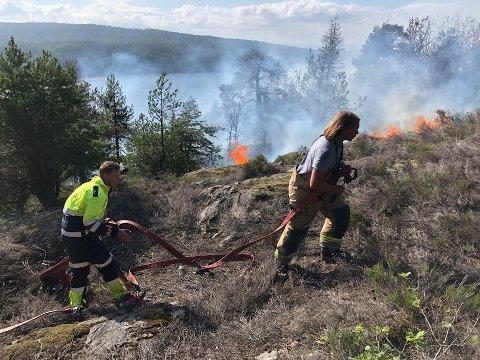 BRANN: Flere hundre kvadratmeter brant på Røysåsen i Moss mandag.