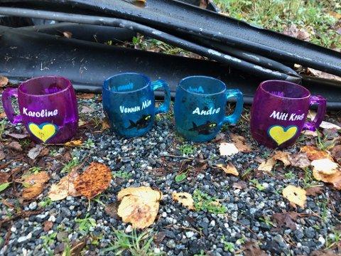 KJENNER DU DISSE? Tannglassene til Karoline, Vennen min, André og Mitt krus stammer fra søppelet som er dumpet ved Asperudveien.