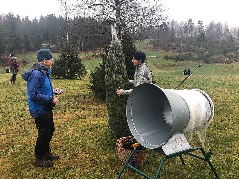 VELG PRISEN SELV: Arne Johan Svendby (til venstre) og de fleste andre som deltok på selvhugsten på Lilelbru går søndag, betalte det juletreet koster. Men Anders Baumberger tilbyr alle som er berørt av koronakrisen, om å betale den prisen de selv vil for årets juletre.