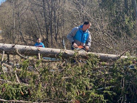 Knut-Erik Grøholt hjalp veitrafikksentralens vaktlag med å fjerne de nedblåste trærne fra veibanen sør for Tomter.
