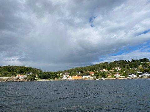 OSLOFJORDEN: Havforsker og manetekspert Tone Falkenberg gir oss noen morsomme fakta om brennmaneter – som det er veldig mange av i Oslofjorden om dagen.