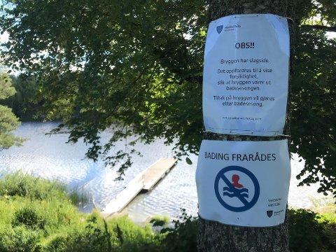 STENGT IDYLL: Brygga innbyr til å stupe uti, men bading frarådes på grunn av oljesøl i Tusse.