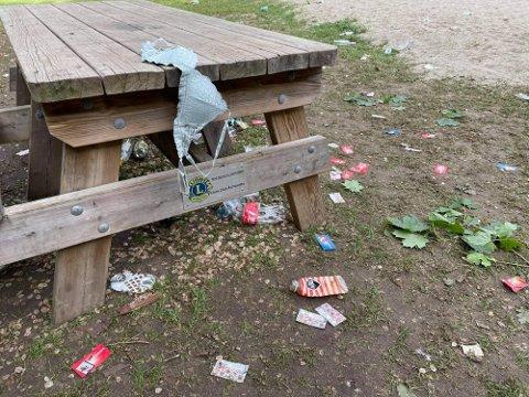 IKKE UVANLIG: Dette bildet er hentet fra en ØB-reportasje tidligere i sommer, og viser hvordan Breivoll forsøples.