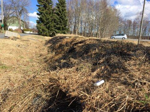 Gressbrann: Det brant godt i det tørre gresset ved fotballbanen på Valby i går.