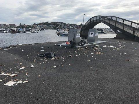 IKKE PLASS: Søppel som lå strødd utover bakken etter at måkene hadde forsynt seg av sekkene som ikke fikk plass i konteinerne, preget Stavern Gjestehavn i helgen.