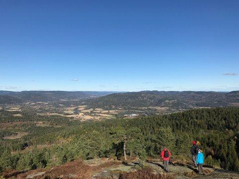 VINDFULLT: Det blåser godt på toppene og åsene i området fra Kvelde til nord for Svarstad, her representert ved et bilde fra Vettakollen (457 m.o.h.). Bildet er tatt nordover, og utsikten viser blant annet Berganmoen industriområde, Styrvold og nordover mot Svarstad.