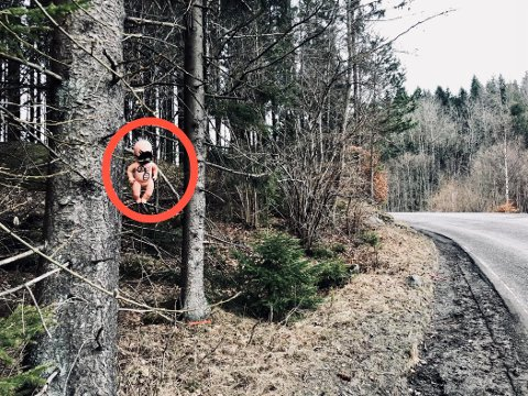Makabert: Plasseringen av denne makabre dukken gjør at mange bilister har fått seg et minisjokk på vei opp Bommestadbakkene.