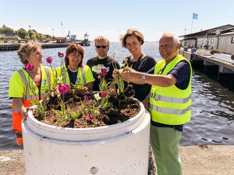 Håper på mange folk: Torsdag er det klart for ny dugnad i Indre havn. Fra venstre Marit Lyngås, Gry Snildal, Asbjørn Lien, Lilly Skow Røed og Terje Anthonsen.