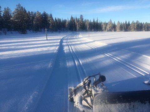 GODE FORHOLD: Det er gode forhold for langrenn flere steder i kommunen etter litt kulde der det enten har kommet naturlig snø, som i Vindfjelltraktene, eller det er produsert med snøkanon. (Foto: Vindfjellsamarbeidet)