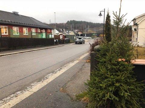 ENSOM: Juletreet i Eidgata kan ha falt av en bil tidligere i dag. Nå står det ensomt og forlatt og savner både pynt og eier.