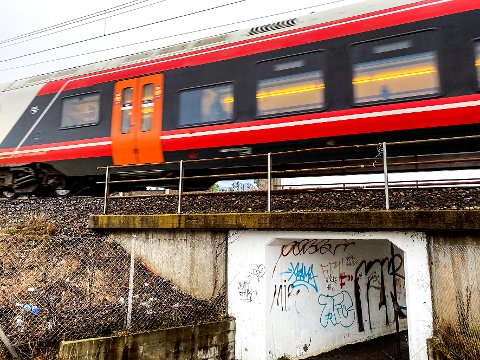 TOG: En satsing på jernbanen i form av nye tog og utbygging av nye spor og linjer er den eneste fornuftige vegen, skriver artikkelforfatteren.