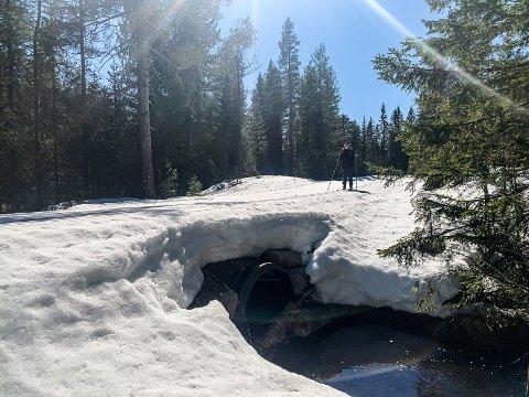 NOK SNØ: I åpent terreng er det nå opp mot 60 centimeter snø.