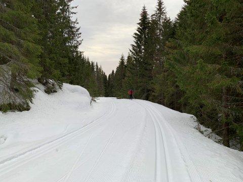 SNØ OG VINTER: Tar du turen til Vindfjell vil du få en annen følelse av vinter, og muligheten til å benytte deg av den.