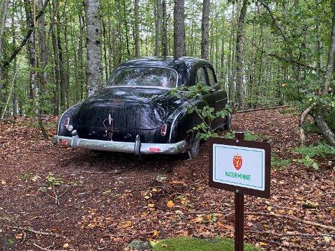 IKKE TVIL: Det er ikke tvil om at det er et naturminne der bilen er hensatt.