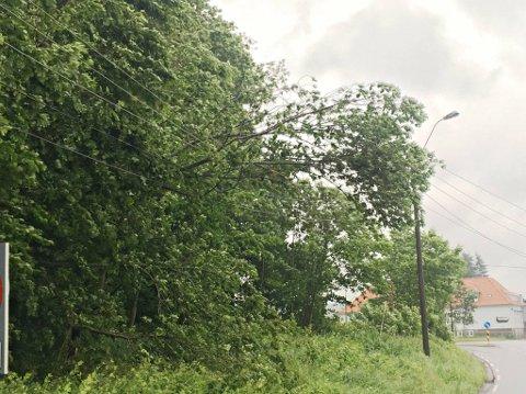 UVÆR I VENTE: Det er varslet vindkast opp mot 30 m/s, dermed kan det hende flere farlig forhold oppstår i forbindelse med strømforsyning. Arkivfoto.