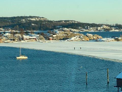 NÆR VANNKANTEN: Det er mange som går på skøyter på sjøisen nå. En SB-leser frykter det snart skjer en ulykke på isen ved Granholmen, på grunn av hvor nær vannkanten mange beveger seg.