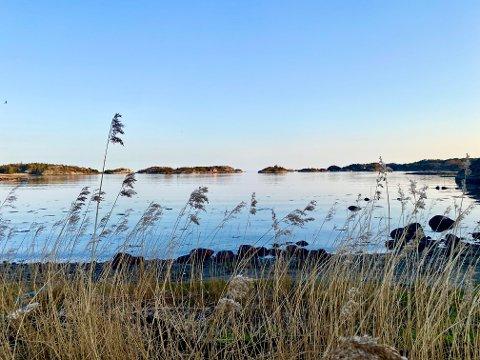 KALDERE: Temperaturene vil synke i helgen, men 20-tallet kan igjen bli en virkelighet midt i neste uke. Her fra Viksfjord en varm vårdag.