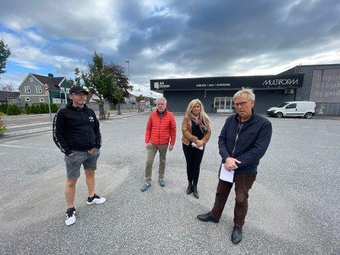 NEI TIL HØYDER: Morten Holtan, Thore Olsen, Heidi Breidal og Kåre Breidal har mange i nabolaget på øvre Nanset bak seg når de nå protesterer mot planene om å bygge opp mot 50 leiligheter på denne tomta.