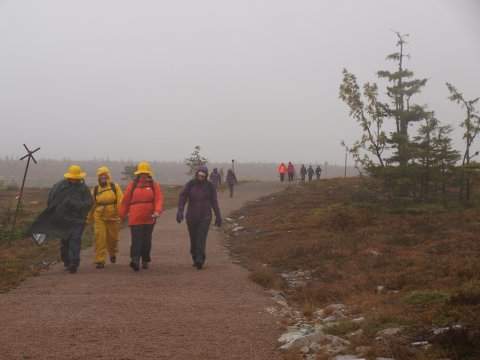Fra venstre Ann Kristin Lundh, Christin Lund, Mette Andersen og Rita Haugeli. De gikk 10 kilometer i skikkelig ruskevær, men holdt humøret oppe og var fornøyde med helga.