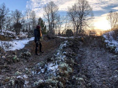 TURTERRENGET: Aud Lillian Holøien står i det som før var uberørt natur. Nå er mose, stein og jord kastet opp og det er to djupe spor på kryss og tvers overalt etter at en stridsvogn har herjet rundt i området. Foto: Guri Jortveit