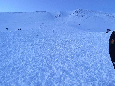 RAS: Snøraset som gikk på Tronfjell torsdag ettermiddag var 500 x 200 meter. Til alt hell ble ingen tatt av raset, opplyser Innlandet politidistrikt. Foto: Thomas Baar, Tynset Røde Kors
