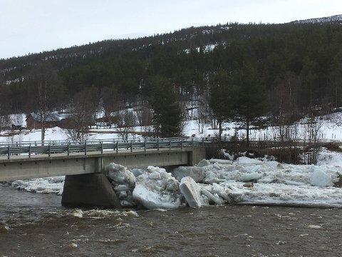 FOLLA: Store ismasser har samlet seg ved Dølplassbrua over Folla. (Foto: Turid Alander)