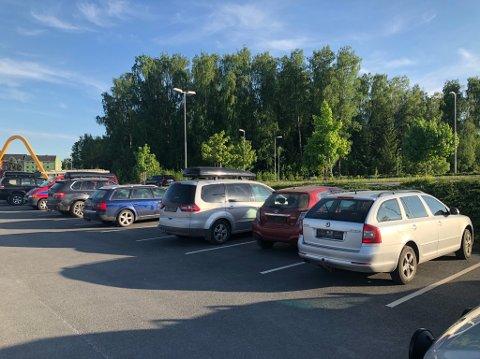 LANG LANG REKKE: 17 biler ble avskiltet på Hamar i dag. Foto: Statens vegvesen