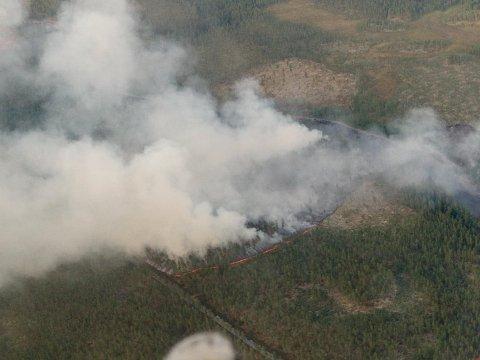 MYE MANNSKAP: Det er satt inn store brannressurser for å slukke skogbrannen ved Vermundsjøen. Røykutviklingen er ekstrem på stedet. (Foto: Einar Rønningen/Brannvesenet)
