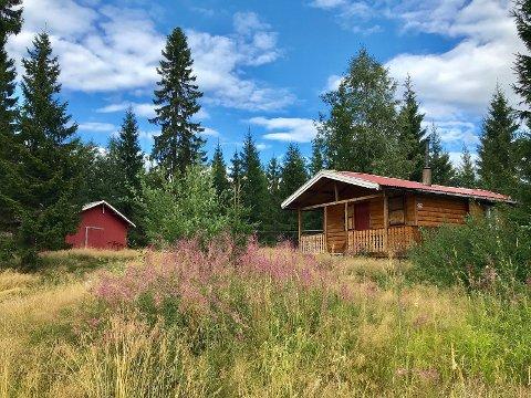 TIL SALGS: Lars Monsens hytte på Braskereidfoss i Våler er lagt ut for salg. Han har kjøpt seg ny hytte litt lenger nord i Norge – og han trenger rett og slett ikke to. Foto: Elin Berntsen