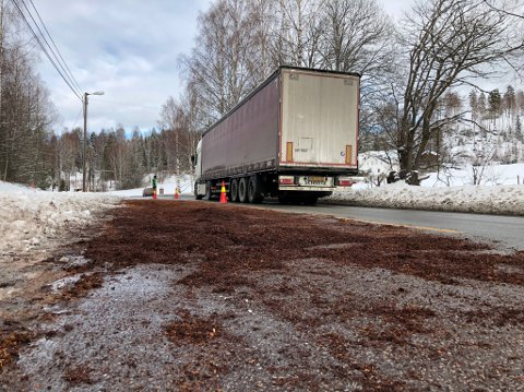 OLJESØL: Rundt 50 meter av vegbanen på riksveg 2 var dekket av bark etter oljesølet tirsdag formiddag.