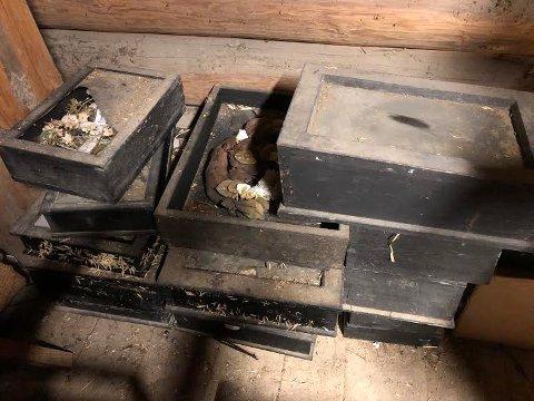 GJEMT UNNA: Stablene med de gamle skrinene har stått og samlet støv i snart 200 år, uten at noen har tenkt noe særlig på hva dette er.